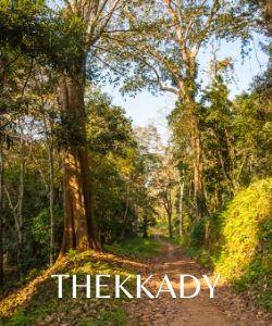 Thekkady travel guide