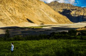 Shyok Valley Ladakh travel - Soul Travel India