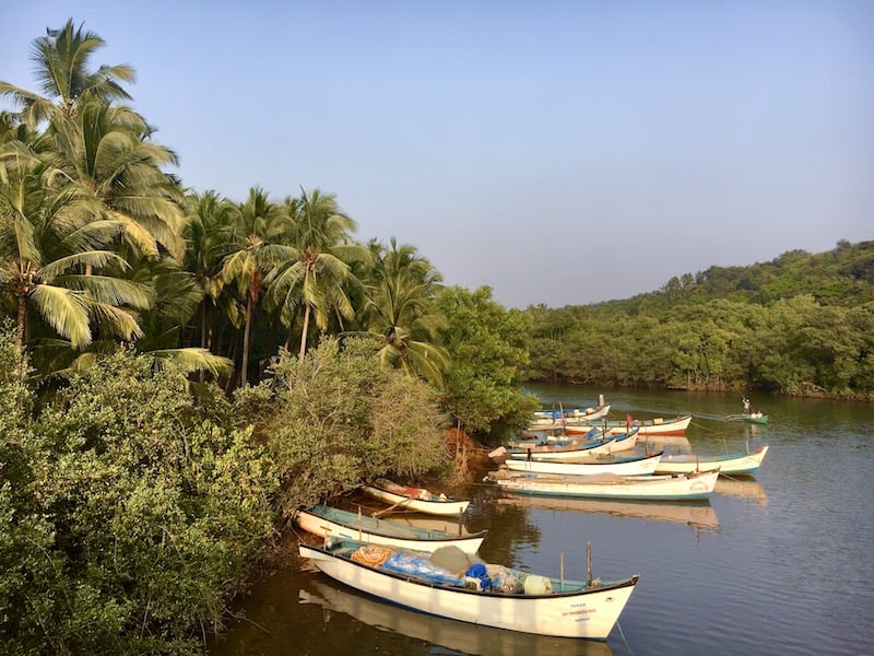 the best time to visit Goa, India