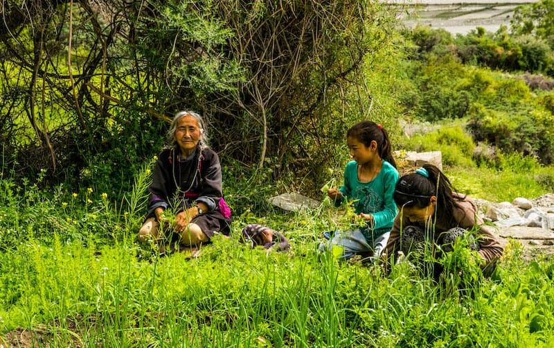 responsible travel in Shyok, Ladakh