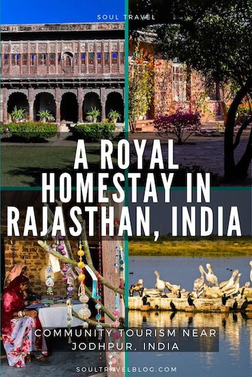 Planning a trip to Rajasthan, India? You'll want to check out this beautiful, royal homestay near Jodhpur! #sustainabletravel #responsibletravel #india #incredibleindia #traveltips