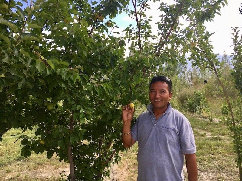 Nubra eco lodge and organic farm