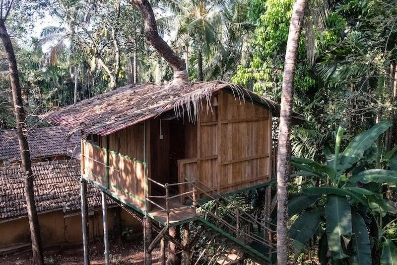 Spice farm tours in Goa