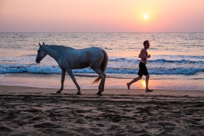 travel guide to Goa, Goa travel blog