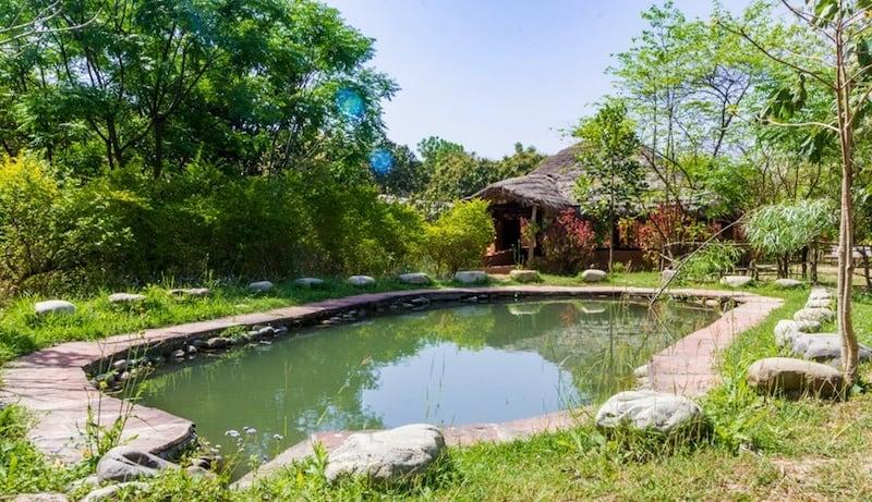 best jungle resorts in India
