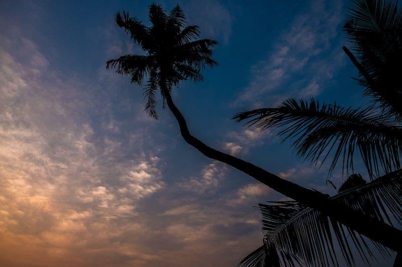 travel guide to Kerala