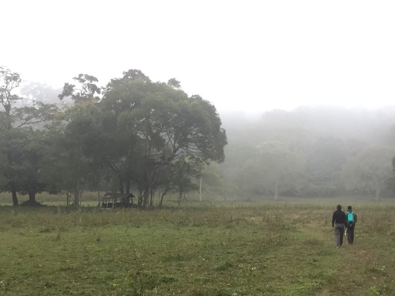 things to do in thekkady and responsible tourism in Periyar